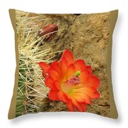 Cactus Flower Bright Throw Pillow by Feva  Fotos