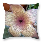 Stapelia Gigantean Flower Throw Pillow
