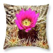 Cactus Flower Palm Springs Throw Pillow