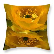 Cactus Flower Song Throw Pillow