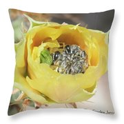 Cactus Flower With Ball Of Bees Throw Pillow