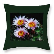 Cactus Flowers With Texture Throw Pillow