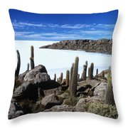 Cactus Forest And Salar De Uyuni Throw Pillow