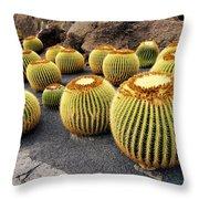 Cactus Garden On Lanzarote Throw Pillow