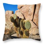 Cactus In Hidden Valley Throw Pillow