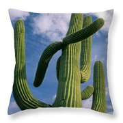 Cactus In The Clouds Throw Pillow