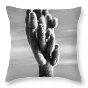 Cactus Island Salt Flats Black And White Throw Pillow