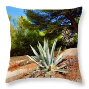 Cactus On A Rocky Coast Of French Riviera Throw Pillow