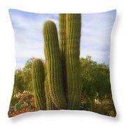 Cactus Monterey California Throw Pillow