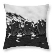 Cactus Nubs Throw Pillow