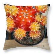 Cactus Orange Throw Pillow