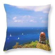 Cactus Overlooking Ocean Throw Pillow