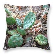 Cactus Pile Throw Pillow