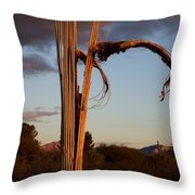 Cactus Ribs Throw Pillow