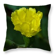 Cactus Splendor Throw Pillow