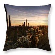 Cactus Sunset  Throw Pillow