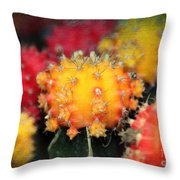 Cactus Topknots Throw Pillow