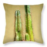 Cactus Towers Throw Pillow