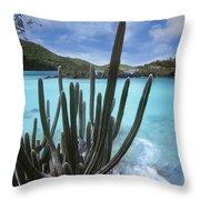 Cactus Trunk Bay  Virgin Islands Throw Pillow