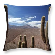 Cactus With The Andes Mountains Throw Pillow