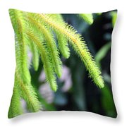 Cactus2750 Throw Pillow