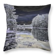 Caddo Lake II Throw Pillow