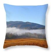 Cades Cove 1 Throw Pillow