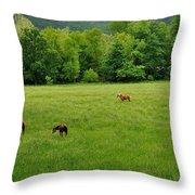 Cades Cove Horses Throw Pillow