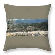 Cades Cove Panorama Throw Pillow