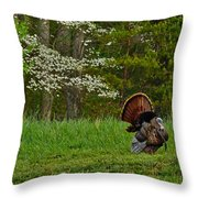 Cades Cove Spring Visions Throw Pillow