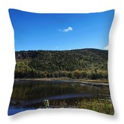 Cadillac Mountain And Lake In Acadia National Park Throw Pillow