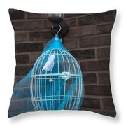 Cage On A Wall Throw Pillow