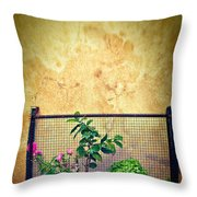 Caged Throw Pillow by Silvia Ganora