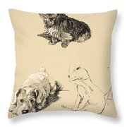 Cairn, Sealyham And Bull Terrier, 1930 Throw Pillow