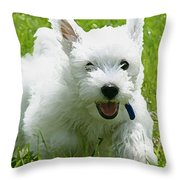 Cairn Terrier Painting Throw Pillow