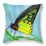 Cairns Birdwing Throw Pillow