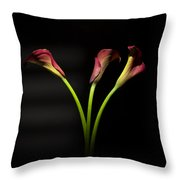 Cala Lily 4  Throw Pillow