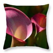 Cala Lilies Light And Shadow Throw Pillow