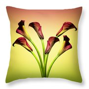 Cala Lily 6 Throw Pillow