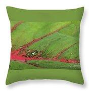 Caladium Leaf And Drop Throw Pillow