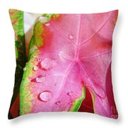 Caladium Leaf Throw Pillow