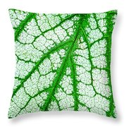 Caladium Leaf  Throw Pillow
