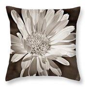 Calendula Throw Pillow by Chris Berry