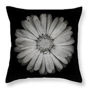 Calendula Flower - Textured Version Throw Pillow