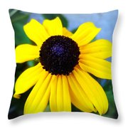Calendula Throw Pillow
