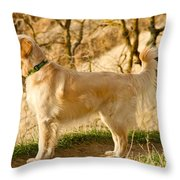 Cali Gold Throw Pillow by Bill Gallagher