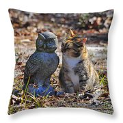 Calico Cat And Obtuse Owl Throw Pillow by Al Powell Photography USA