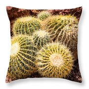 California Barrel Cactus Throw Pillow