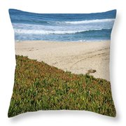 California Beach With Ice Plant Throw Pillow by Carol Groenen