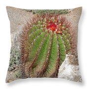 California Beauty Throw Pillow by Christine Till
